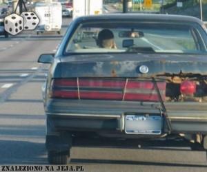 Rdza vs samochód