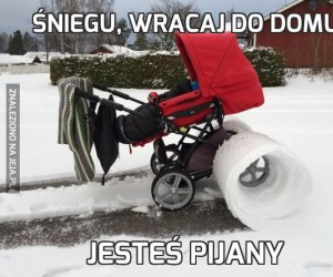 Śniegu, wracaj do domu