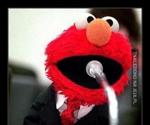Elmo startuje w wyborach na prezydenta Rosji