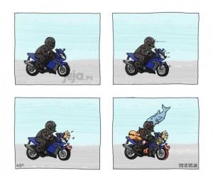 Standardowa wycieczka motocyklisty