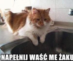Pora na kąpiel