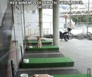 IKEA w Niemczech zainstalowała przed sklepem...