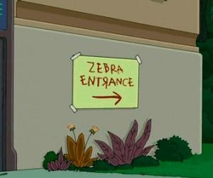 Specjalne wejście dla zebr