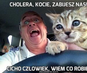 Cholera, kocie, zabijesz nas!