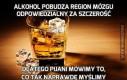 Alkohol pobudza region mózgu odpowiedzialny za szczerość
