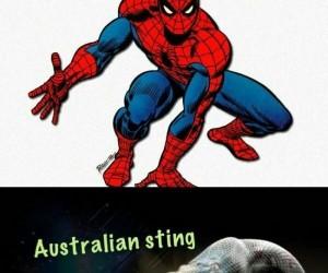 Australijska wersja słynnego mema