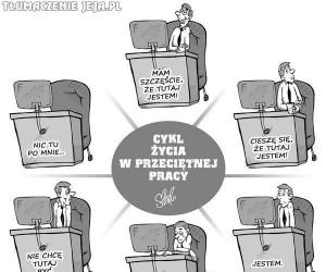 Cykl życia w przeciętnej pracy