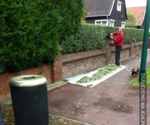 Co robisz, szanowny sąsiedzie?