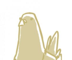 Taneczne ptactwo