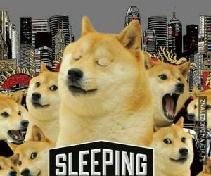Tak bardzo sleeping, wow!