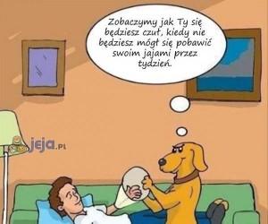 Mroczna zemsta psa