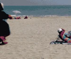 Mam zakaz wchodzenia z psem na plażę...