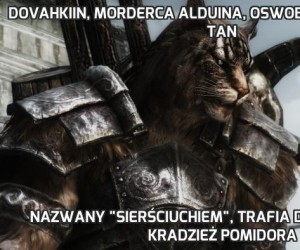 Dovahkiin, morderca Alduina, Oswobodziciel Tamriel, Tan