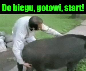 Jazdaaaa!