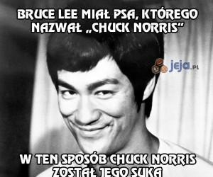 Sprytny Bruce