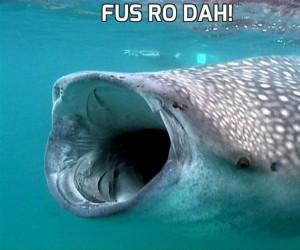 FUS RO DAH!