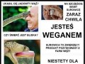 Sposób na weganów