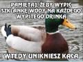 Dobra rada kaczki przyjęta!