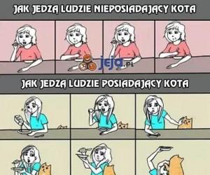 Jak jedzą ludzie posiadający kota