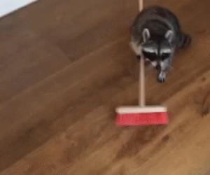 Dobra, posprzątałem, a teraz daj mi nagrodę