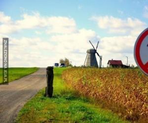 Zakaz walki z wiatrakami