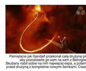 Cwaniak Gandalf