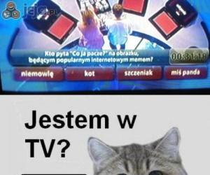 Jestem w tv?