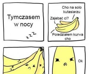 Tajemnica bananów odkryta