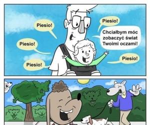 Świat z perspektywy psa