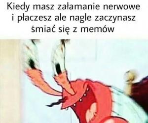 Memy są dobre na wszystko