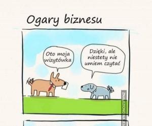 Ogary biznesu