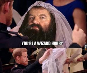 Szybko Harry, do Hogwartu