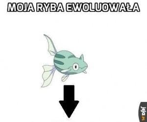 Czasami po prostu nie rozumiem Pokemonów
