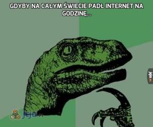 Gdyby na całym świecie padł internet na godzinę...