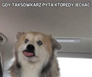 Gdy taksówkarz pyta którędy jechać