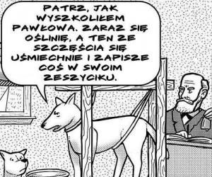Psy Pawłowa... czy Pawłow Psów?