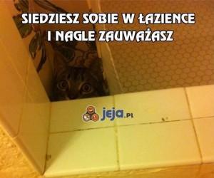 Siedzisz sobie w łazience i nagle zauważasz...
