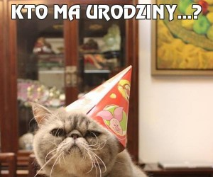 Kto ma urodziny...?