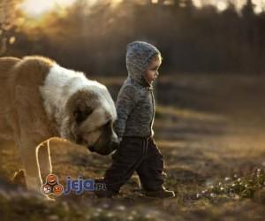 Spacer z przyjacielem o świcie