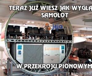 Teraz już wiesz, jak wygląda samolot