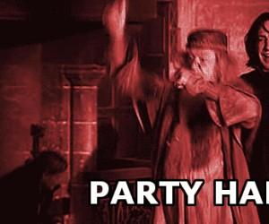 Dumbledore w sylwestrowym klimacie