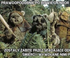 Prawdopodobnie po bitwie o Endor wszystkie Ewoki