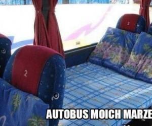 Autobus moich marzeń