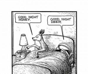 Good night honey