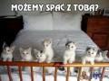 Możemy spać z Tobą?