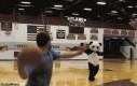 Uwaga, łamiąca wiadomość! Panda dostała headshota!