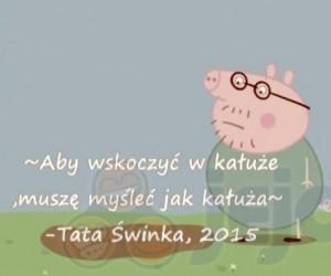 Tata Świnka i jego mądrości