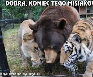 Groźne drapieżniki z zoo