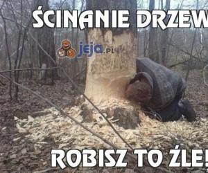 Ścinanie drzewa