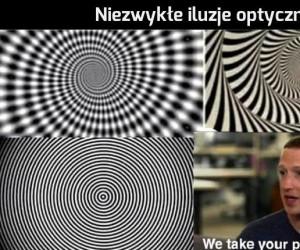 Widzisz to?